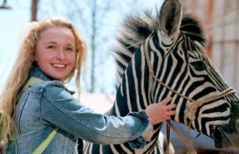 <!--:ru-->В штате Невада состоялись гонки верблюдов, страусов и зебр<!--:-->
