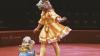 <!--:ru-->Открытие нового сезона в цирке: ожидается много сюрпризов (ФОТО)<!--:-->