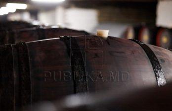 <!--:ru-->Фермеры начали сбор винограда технических сортов и уже приготовили бочки для нового вина<!--:-->