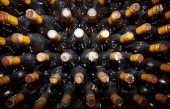 <!--:ru-->Экспорт вин в страны ЕС вырос на пять миллионов литров<!--:-->