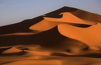 <!--:ru-->Google с помощью верблюда создала виртуальный тур по пустыне Лива (ВИДЕО)<!--:-->