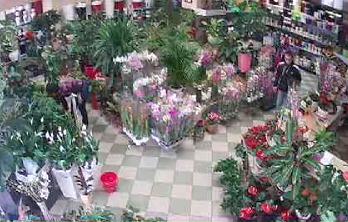 <!--:ru-->Кража телефона в одном из столичных цветочных магазинов (ВИДЕО)<!--:-->