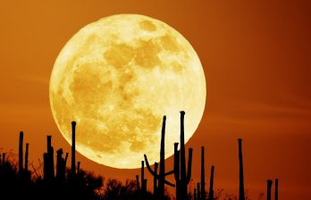 <!--:ru-->На Луне обнаружены засыпанные извержением долины<!--:-->