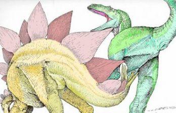 <!--:ru-->Cтегозавры убивали аллозавров ударом хвоста в лобковую кость<!--:-->