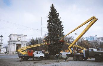 <!--:ru-->Рождественскую ель установили в центре столицы (ФОТО) <!--:-->