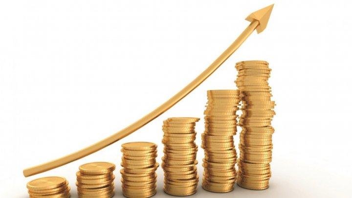 Венский институт экономических исследований: ВВП Молдовы в этом году вырастет на 3,8%