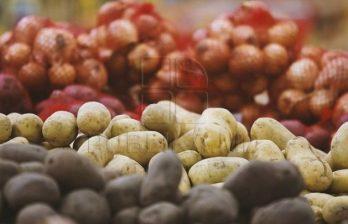 С молдавской границы вернули в Беларусь четыре грузовика с картофелем
