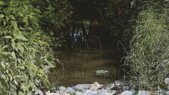 В молдавских водоемах превышена концентрация нитратов