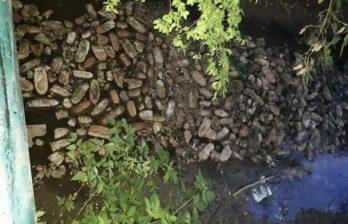 Под Кишиневом сотни буханок хлеба цинично выбросили прямо в воду (ФОТО)