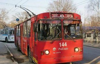 Курьёзный пассажир в бельцком троллейбусе позабавил горожан (ФОТО)