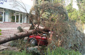 (ФОТО) Последствия урагана в Бельцах от 2 июля