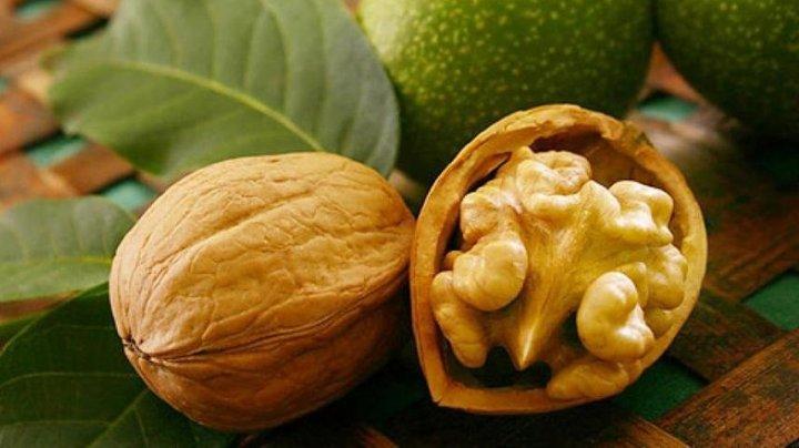 В минсельхозе ожидают прирост урожая грецких орехов на 15%