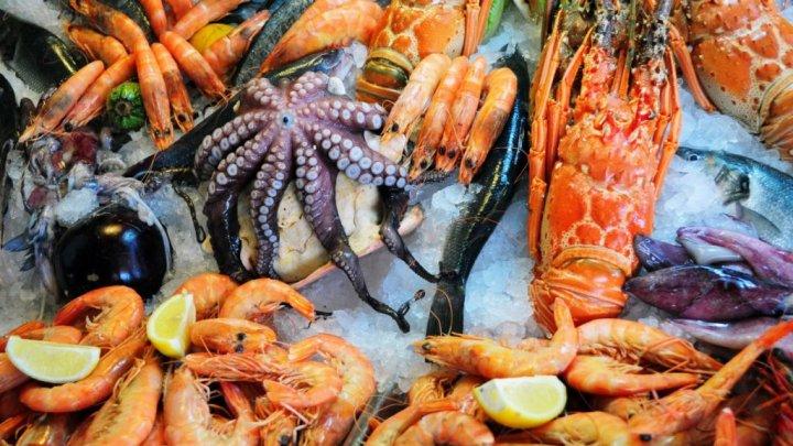 В усадьбе Манук-Бея устроили фестиваль морепродуктов