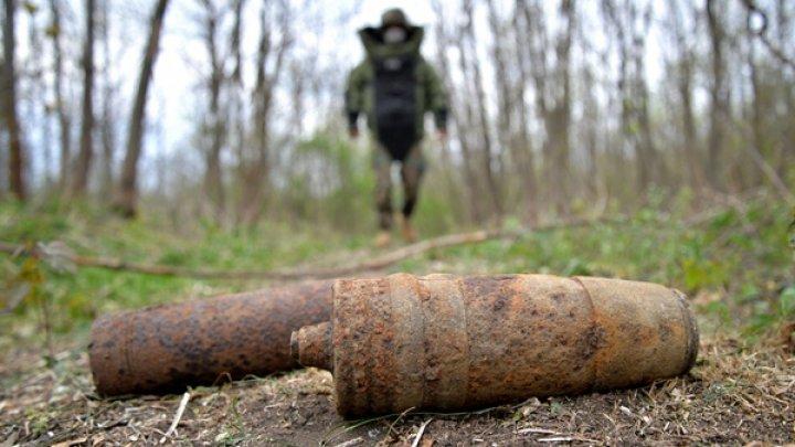 Саперы прочесали лес у села Белцац, где от взрыва пострадали двое подростков