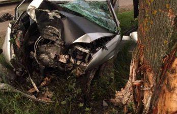 (ВИДЕО) Смертельное ДТП в Единцах: водитель врезался в дерево