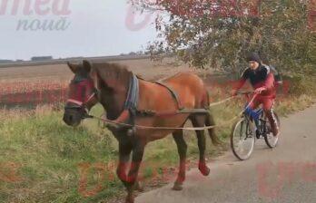 В Румынии лошадь тащила вместо повозки велосипед