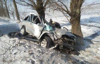 Серьезная авария в Бричанском районе - два человека погибли