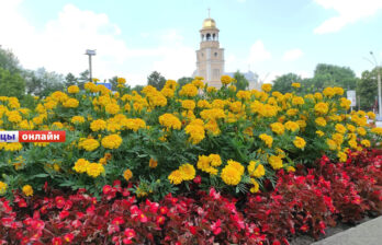 Новый желтый код в Молдове: грозовые дожди и шквалистый ветер