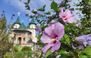 Церковь Всех Святых, Бельцы, ул. Николая Йорга